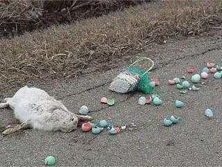 Dead_easter_bunny