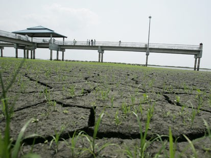 Ap_fla_drought_070530_ms